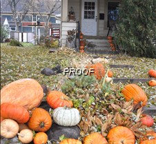 halloween-fall scene