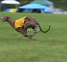 Run2_Specials _Course3_6544 copy