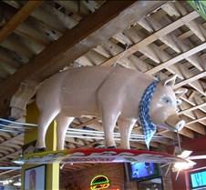 Giant Pig at Mo's