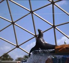 Miami Seaquarium 116