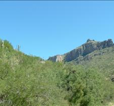 Tucson Sabino Canyon 14