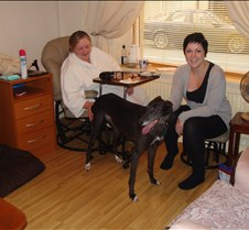 2011_09_22 - Nikki Nikki has now been rehomed with Faye and family in the Rhondda