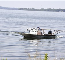 treating milfoil