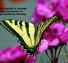 Copy of butterfly12