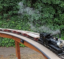 Joe Gage's Shay & Logging Train