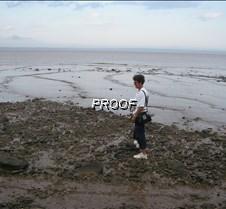 low tide again