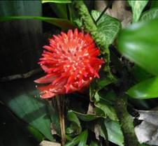 Hawaii 2010 287