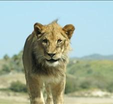 Wild Animal Park 03-09 205