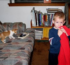 2004 11 19 Andrew messing around with our new kitten... Andrew playing magic and Ta Da with the new kitten.. some of them are cute.. enjoy!!!