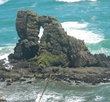 Rocky Coast NZ