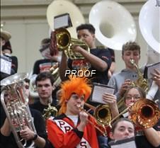 band. orange hair JPG