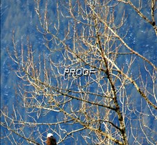 eagletree-24