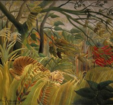 047Tiger in a Tropical Storm-Henri Rouss