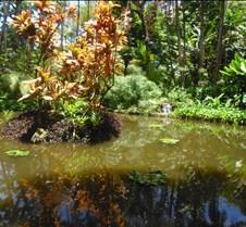 Hawaii 2010 288