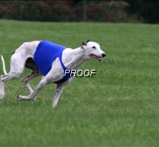 Run2_Course2_IMG_6375 copy