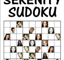 Serenity Sudoku -ht grid 11 x 17