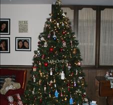2017 12-25a Christmas at Home (8)
