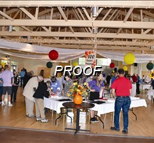 wide shot at party