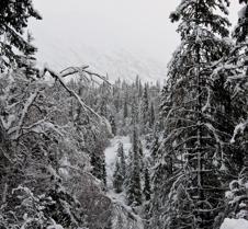 Alaska 2010 (3)