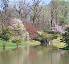 MOBOT Japanese Garden