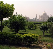 Mehtab Bagh(Moon Garden)