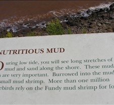 Narrative of the mud