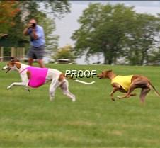 Run2_Course4_IMG_6433 copy
