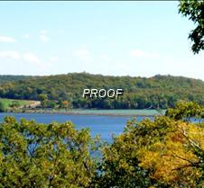 S lake lida curly pond leaf story