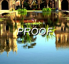 REF pool
