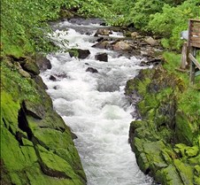 Ketchikan Stream