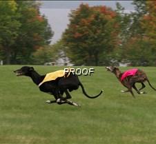 Run2_Specials _Course1_6478 copy