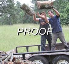 070613_Wood Stacking Wildart05