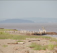 Remains of acadian dikes - 1800s