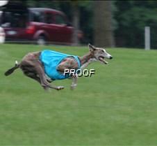 Run2_Course1_IMG_6345 copy2