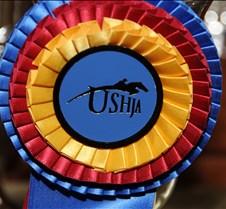 USHJA-12-8-09-303-AwardsDinner-DDeRosaPh