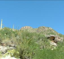 Tucson Sabino Canyon 15