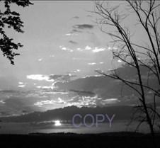 say copy 43.jpg