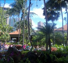 Hilton Complex