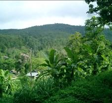 165 landscape