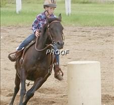 4-H Katie Sorenson horse
