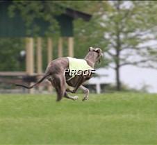 Run2_Course2_IMG_6380 copy