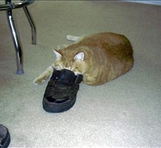 He loved shoes...