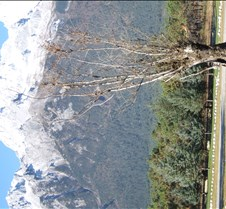 2008 Nov Lijiang 020