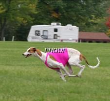 Run2_Course4_IMG_6430 copy