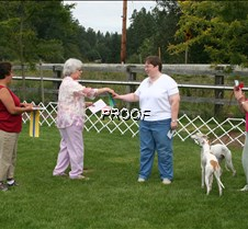 Obedience_Awards (3)