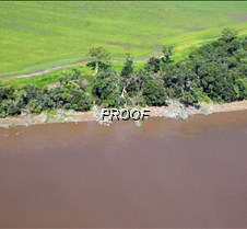 river bank2