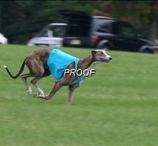 Run2_Course1_IMG_6343 copy