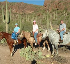 Tucson crew horseback