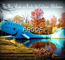 DSC05719  The Blue Whale