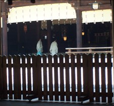 Monks at temple readying to pray